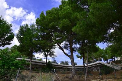 Een modern, strak gebouw in landelijke omgeving tussen de naaldbomen, groen