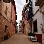 smalle straat, huizen, plantenbakken, speurtocht in dorp, grijs, bewolkt