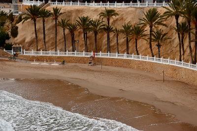 zee, zandstrand, palmbomen, Benidorm